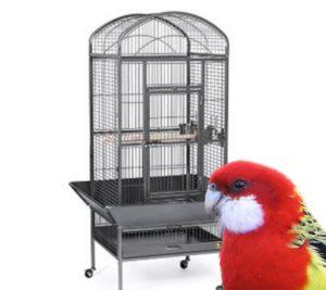 jaulas para loros tienda