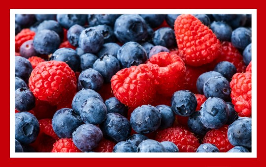 frutas para pajaros frutos rojos