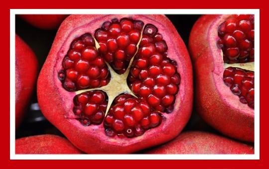 frutas para pajaros granada