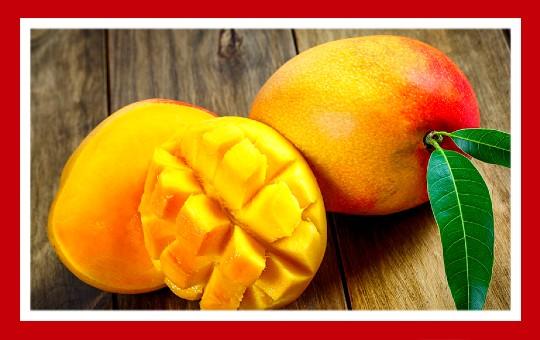 frutas para pajaros mango