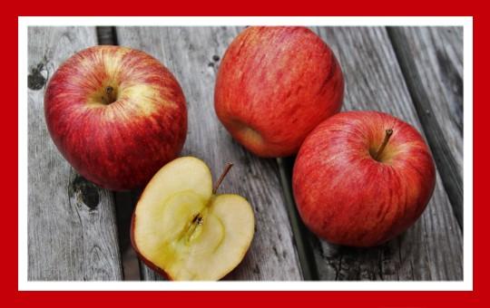 frutas para pajaros manzana