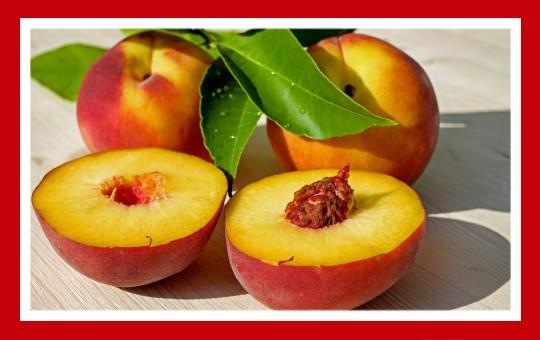 frutas para pajaros melocoton