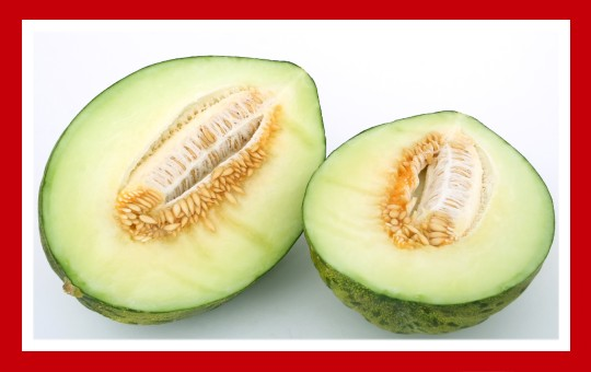 frutas para pajaros melon