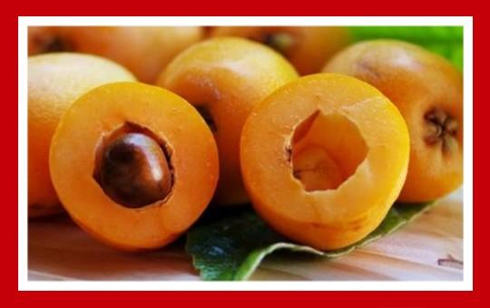 frutas para pajaros nispero