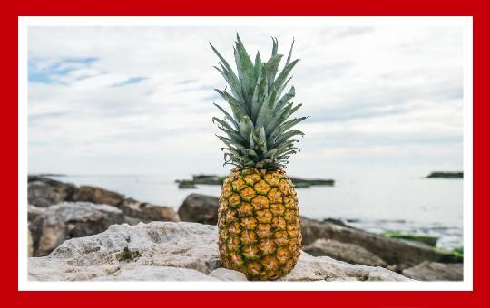 frutas para pajaros piña