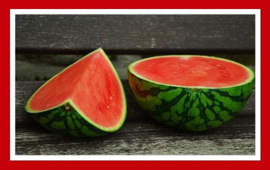 frutas para pajaros sandia
