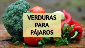 verduras para pajaros